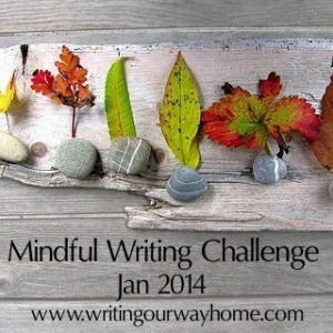 Mindful Writing Challenge 2014 Small stones